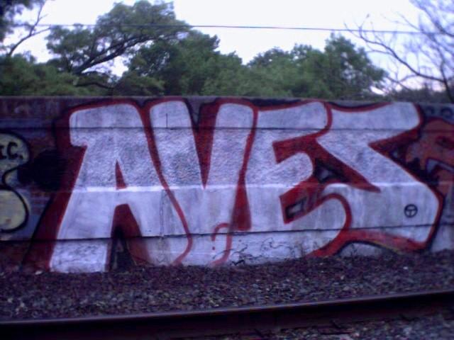 aves_may29.jpg