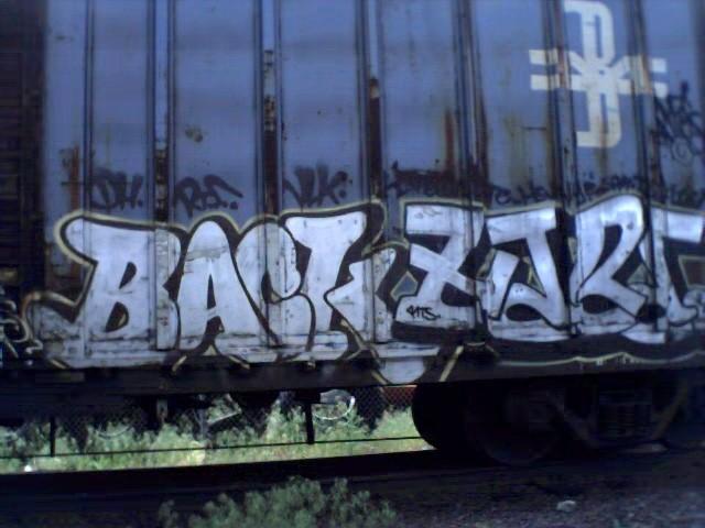 backhare_hood521.jpg
